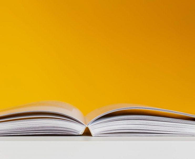 Lezen: een oefening in overgave